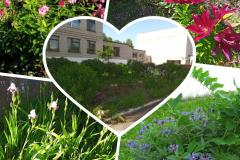 Цвети школьный двор, цвети!
